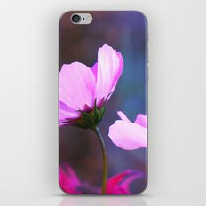 You Appear in My Dreams iPhone Skin