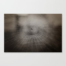 Oh What a Tangled Web We Weave.......  Canvas Print