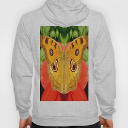 Meadow Argus Butterfly Hoody