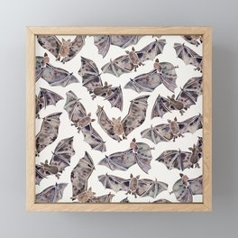Bat Collection Framed Mini Art Print