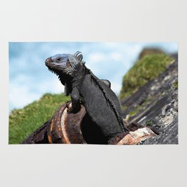 iguana Rug