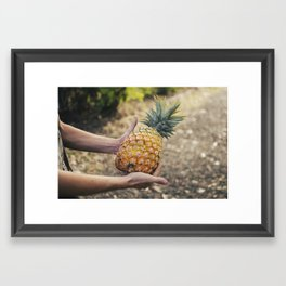 Pineapple Framed Art Print