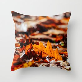 Red Autumn Leaves Background In Fall Season, Autumn Season, Fall Background, Falling Leaves, Art Throw Pillow