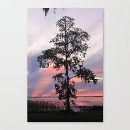 Gods Cypress Canvas Print