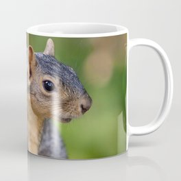 Brown Squirrel In A Tree | Wildlife Photography Coffee Mug