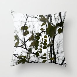 gently gentle #5 Throw Pillow