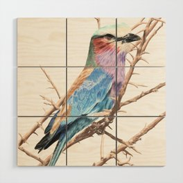 Lilac breasted roller Wood Wall Art