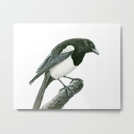 Magpie ink painting Metal Print