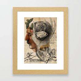 Serotonın Framed Art Print