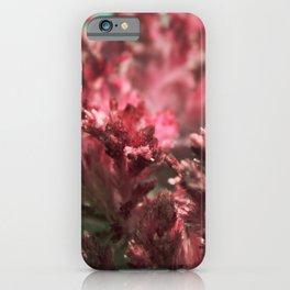 Сrystals iPhone Case