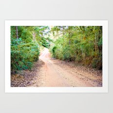 Road to Home Art Print