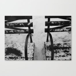 World in Black and White Canvas Print
