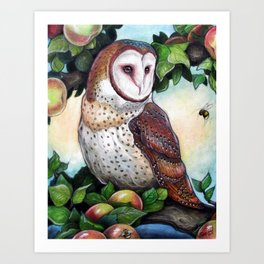 Barn Owl in Apple Tree Art Print