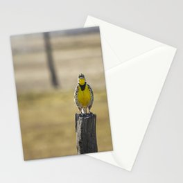 Have Audience Will Sing Stationery Cards