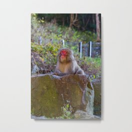 Deep Monkey Thoughts Metal Print
