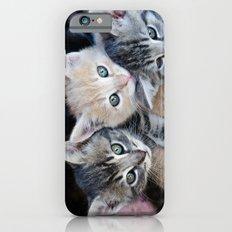 Kittens, 3 balls of tenderness iPhone 6s Slim Case