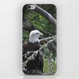 Eagle SF Zoo iPhone Skin