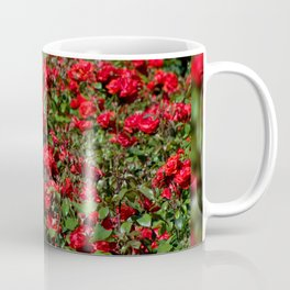 Red roses bunches grow in park Coffee Mug