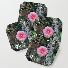 Southern Pink Camellia Coaster