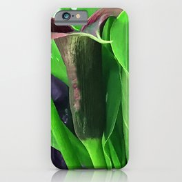 Fine Art Calla Lily Caressed By Lavish Leaves iPhone Case
