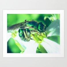 green bee Art Print