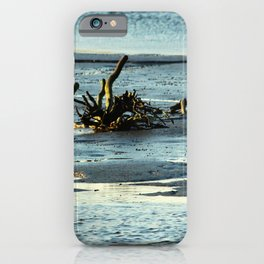 Driftwood In The Marsh iPhone Case