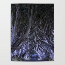 The Dark Hedges III Poster