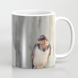 Bayou Barn Swallows (1) Coffee Mug
