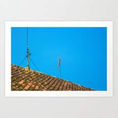 roof Art Print