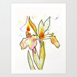 Queen Flower Art Print