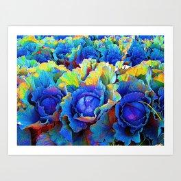 Yuma Cabbages Art Print