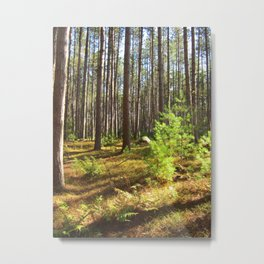 Otter River State Forest Metal Print