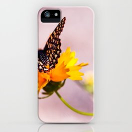 A Sip Of Coreopsis iPhone Case