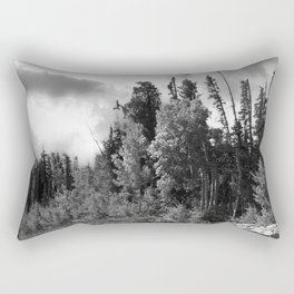 the trail goes dark Rectangular Pillow