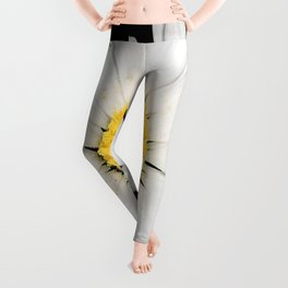 Nine Common Daisies Isolated on A Black Backgound Leggings