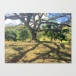 Tire Swing in a Tropical Place Canvas Print