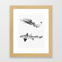 Two Sharks  Framed Art Print
