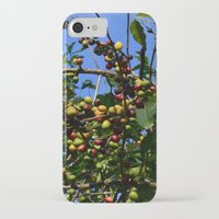 cafe iPhone & iPod Cases featuring Cafe by Camaracraft