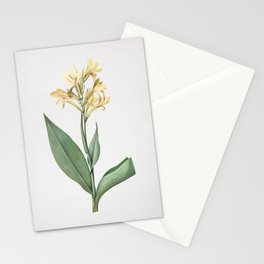 Vintage Water Canna Illustration Stationery Cards