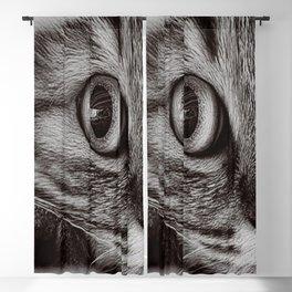 Cat Blackout Curtain