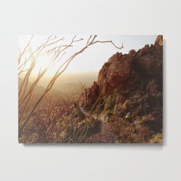 Desert Sunset Trail Metal Print