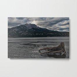 Tree In Jasper Lake Metal Print