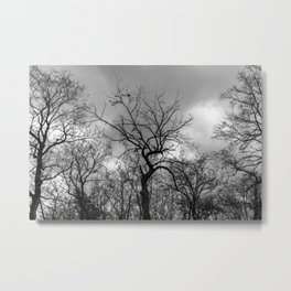 Witchy black and white tree Metal Print