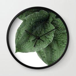 Green plant Wall Clock