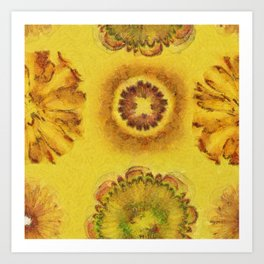 Subitems Disrobed Flowers  ID:16165-082305-64220 Art Print