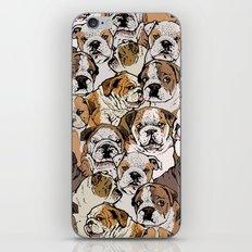 Social English Bulldog iPhone & iPod Skin