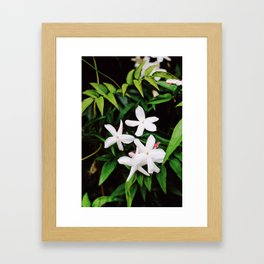 Grow 1 Framed Art Print