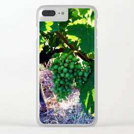 Grapes of Wrath Clear iPhone Case