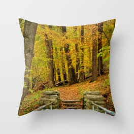 Hike In Autumn Woods Throw Pillow