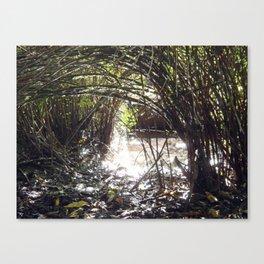 Lakeside Glimmer Canvas Print